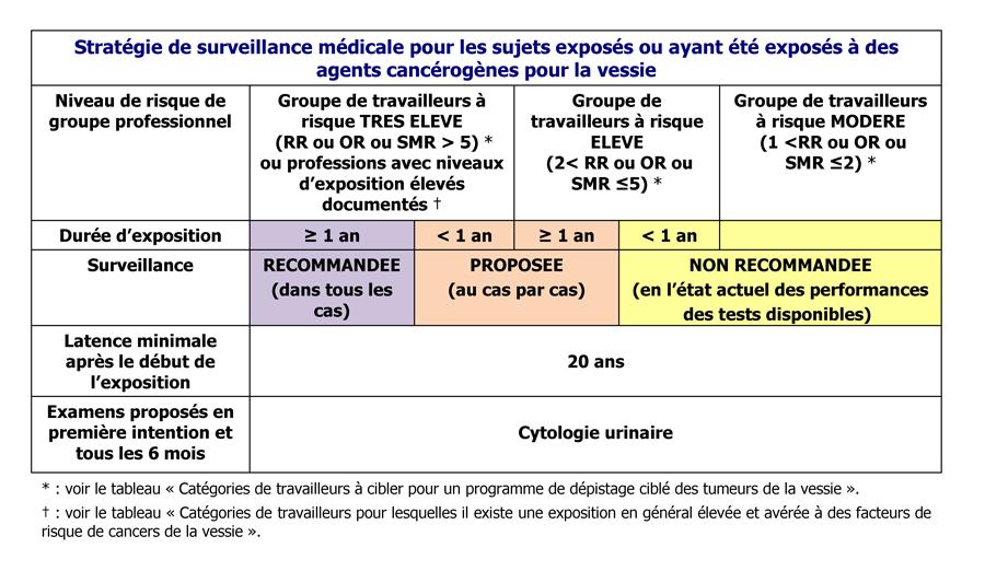 synthese_recomm_bonne_pratique.png